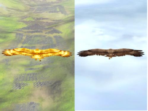 ナナフラ ガチャ 鳥